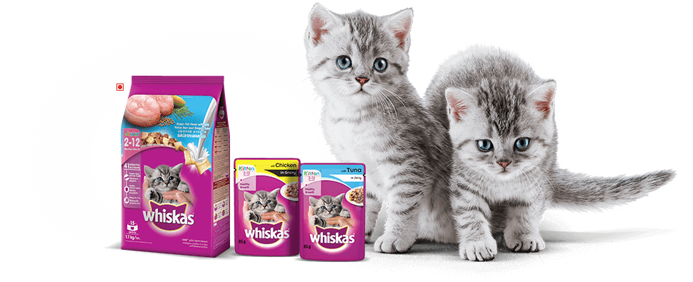 Whiskas Food Range for Cats