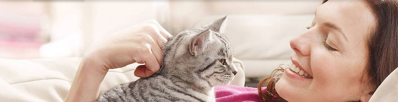 Owner Petting her Cat